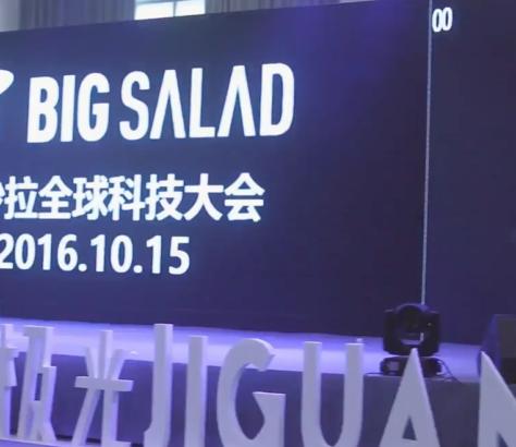 Shenzhen Big Salad 2016